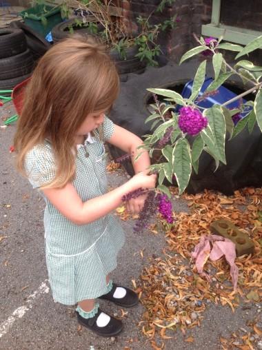 Letting the ladybird go very carefully!